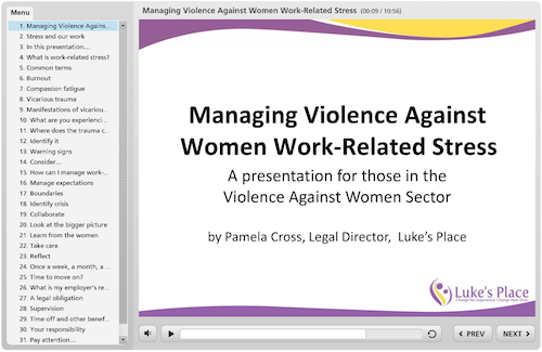Managing violence against women work-related stress - online presentation screen shot