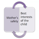 Mothers safety is in the best interests of the child
