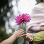 adult hand passing a flower to a child